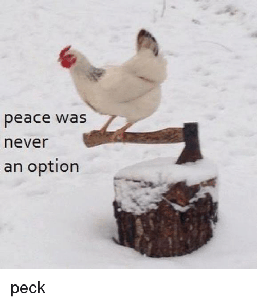 Never, Peace, and Option: peace was  never  an option peck