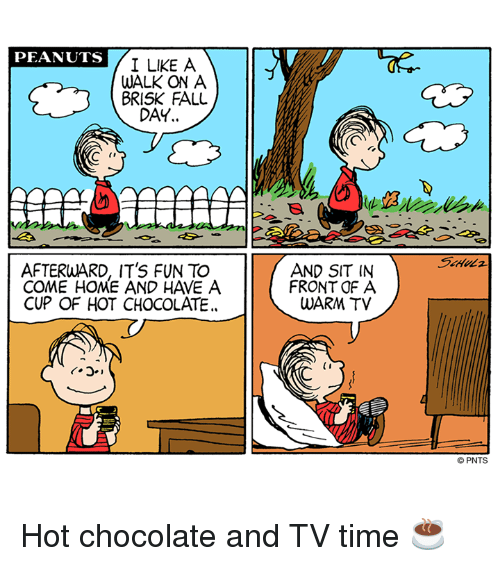 Fall, Memes, and Chocolate: PEANUTS  A  I LIKE WALK ON A  BRISK FALL  DAY..  AFTERWARD, IT'S FUN TO  COME HOME AND HAVE A  CUP OF HOT CHOCOLATE.  AND SIT IN  FRONT OF A  WARM TV  (I  PNTS Hot chocolate and TV time ☕️