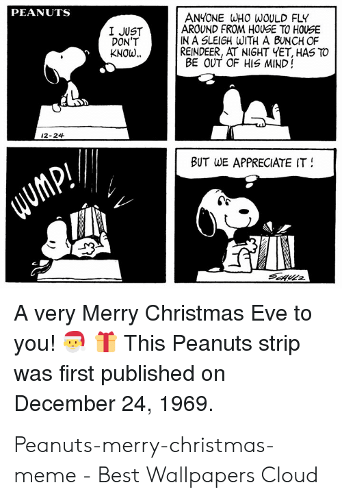 merry christmas meme: PEANUTS  ANYONE WHO WOULD FLY  AROUND FROM HOUSE TO HOUSE  IN A SLEIGH WITH A BUNCH OF  REINDEER, AT NIGHT YET, HAS TO  BE OUT OF HIS MIND!  I JUST  DON'T  KNOw..  12-24  BUT  WE APPRECIATE IT  A very Merry Christmas Eve to  you!TThis Peanuts strip  was first published on  December 24, 1969. Peanuts-merry-christmas-meme - Best Wallpapers Cloud
