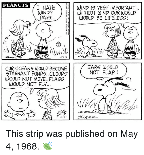 flapping: PEANUTS  I HATE  WIND IS VERY IMPORTANT  WINDY  WITHOUT WIND OUR WORLD  DAYS  WOULD BE LIFELESS  EARS WOULD  OUR OCEANS WOULD BECOME  NOT FLAP  STA6NANT PONDS.. CLOUDS  WOULD NOT MOVE. FLAGS  WOULD NOT FLY... This strip was published on May 4, 1968. 🍃