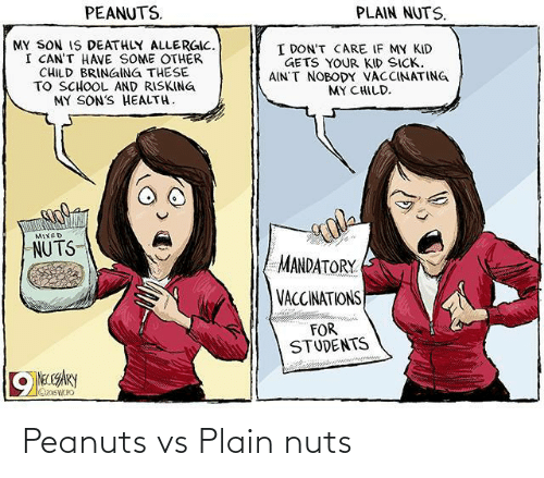 Peanuts: Peanuts vs Plain nuts