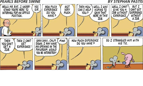 gant: PEARLS BEFORE SWINE  BY STEPHAN PASTIS  THEN HOW WELL INAS WELL, I CANT  BUT I  HELLO MR. RAT. I UNDER.  YES  HOW MUCH  NOT  EXPERIENCE  GIVE YOU A GANT GET  STAND YOURE HERE TO  SIR  VERY  CAN I HELP HOPING TO  MUCH  JOB WITHOUT EXPERIENCE  INTERVIEW FOR AN OFFICE  DO YOU  YOU  GAIN THAT  HAVE.  WITHOUT  POSITION  HERE IN THIS  EXPERIENCE.  A JOR  JOB  SO I STRANGLED HIM WITH  OKAY OKAY. CALM FINE.  HOW MUCH EXPERIENCE  THEN  THEN I CANT  DO YOU HAVE  HIS TIE  DOWN. I MAY HAVE  YOU CANT  GET  GET A  EXPERIENCE  AN OPENING IN THE  JOB  MAILROOM. WOULD  YOU BE INTERESTEDJ
