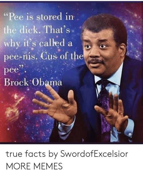 """true facts: """"Pee is stored in  the dick. That's  why it's called a  pee-nis. Cus of the  pee  Brock Obama true facts by SwordofExcelsior MORE MEMES"""