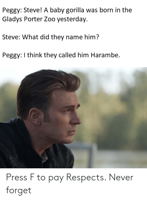 peggy: Peggy: Steve! A baby gorilla was born in the  Gladys Porter Zoo yesterday.  Steve: What did they name him?  Peggy: I think they called him Harambe. Press F to pay Respects. Never forget