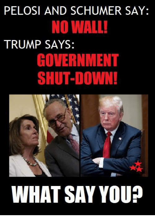 What Say You: PELOSI AND SCHUMER SAY:  NO WALL!  TRUMP SAYS:  GOVERNMENT  SHUT-DOWN!  ra  WHAT SAY YOU?