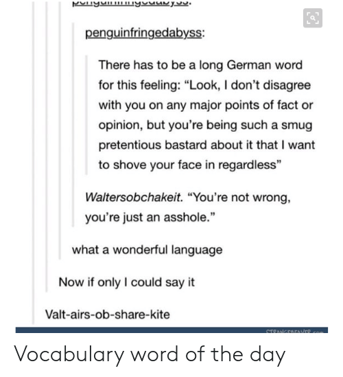 """word of the day: penguinfringedabyss:  There has to be a long German word  for this feeling: """"Look, I don't disagree  with you on any major points of fact or  opinion, but you're being such a smug  pretentious bastard about it that I want  to shove your face in regardless""""  Waltersobchakeit. """"You're not wrong,  you're just an asshole.""""  what a wonderful language  Now if only I could say it  Valt-airs-ob-share-kite  STRANGEBEAVER CoR Vocabulary word of the day"""
