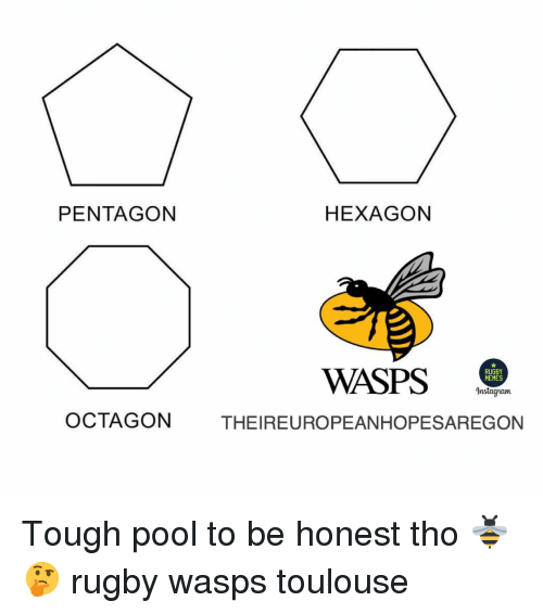 wasps: PENTAGON  HEXAGON  WASPS .  RUGBY  MEMES  Instagram  OCTAGON  THEIREUROPEANHOPESAREGON Tough pool to be honest tho 🐝🤔 rugby wasps toulouse