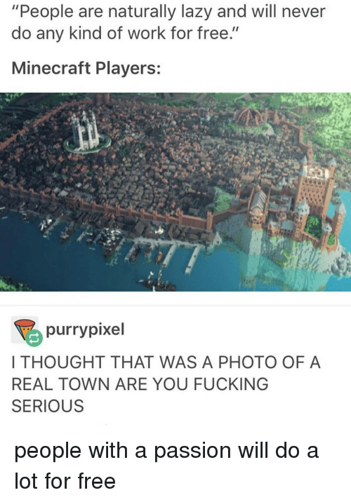 """Pixellated: """"People are naturally lazy and will never  do any kind of work for free.""""  Minecraft Players:  purry pixel  I THOUGHT THAT WAS A PHOTO OF A  REAL TOWN ARE YOU FUCKING  SERIOUS people with a passion will do a lot for free"""