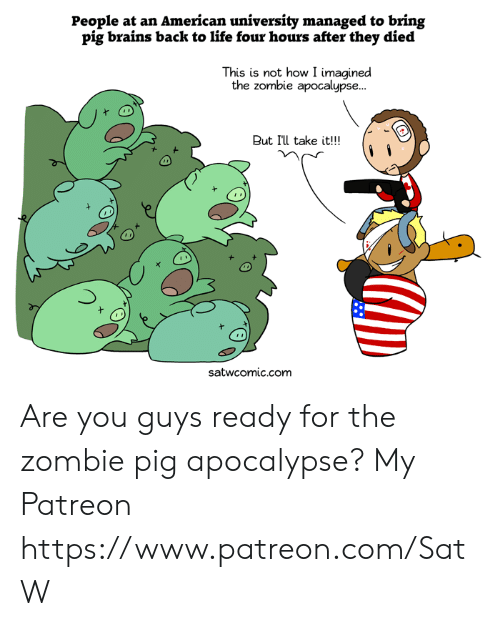 zombie apocalypse: People at an American university managed to bring  pig brains back to life four hours after they died  This is not how I imagined  the zombie apocalypse...  But I'll take it!!!  satwcomic.com Are you guys ready for the zombie pig apocalypse?  My Patreon https://www.patreon.com/SatW