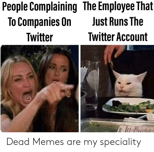Dead Memes: People Complaining The Employee That  To Companies On  Just Runs The  Twitter Account  Twitter Dead Memes are my speciality