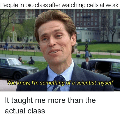 Anime, Work, and Class: People in bio class after watching cells at work  You know.I'm something of a scientist myself