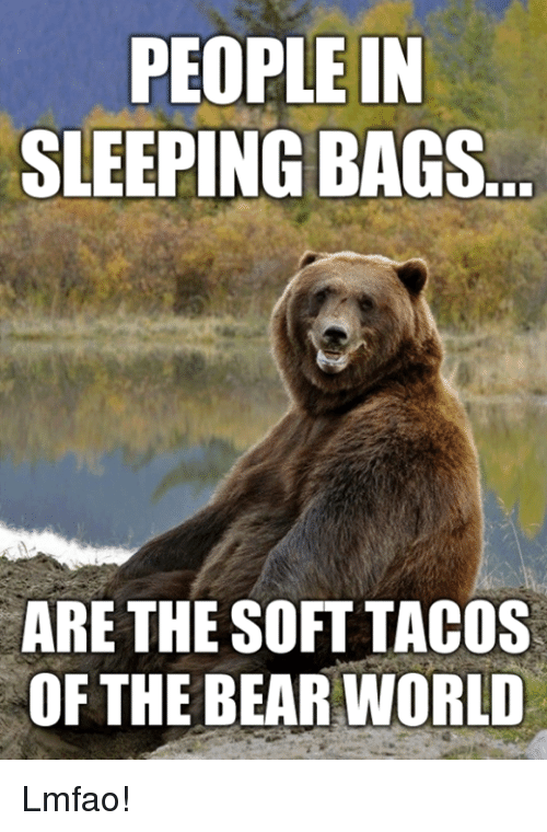 Dank, Bear, and Bears: PEOPLE IN  SLEEPING BAGS  ARE THE SOFT TACOS  OF THE BEAR WORLD Lmfao!
