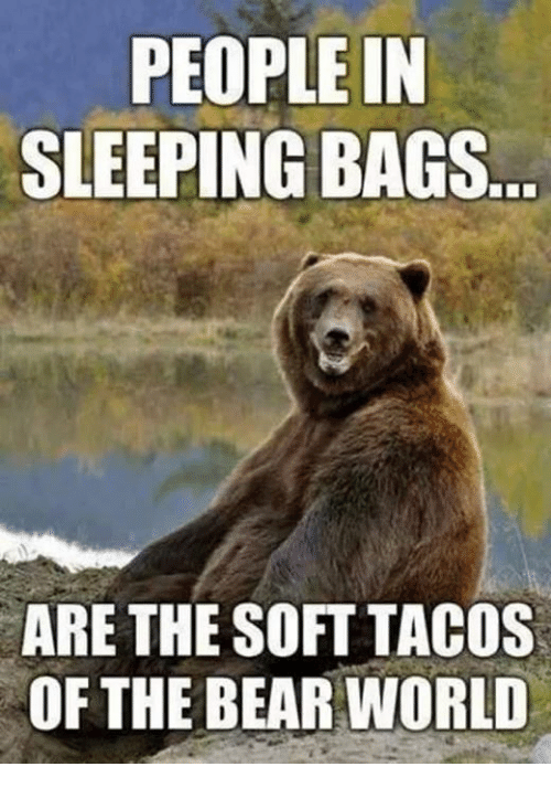 Bear, Bears, and World: PEOPLE IN  SLEEPING BAGS  ARE THE SOFT TACOS  OF THE BEAR WORLD
