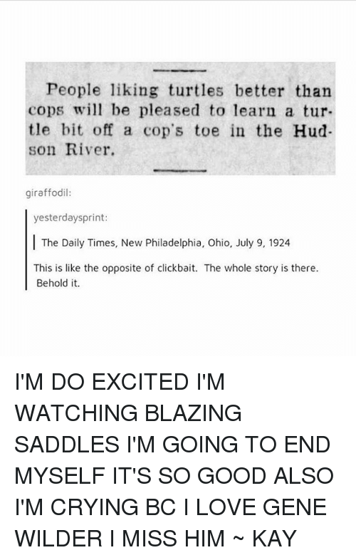 Kaye: People liking turtles better than  copsw be pleased to learn a tur-  tle bit off a cop's toe in the Hud  son River.  giraffodil:  yesterdaysprint:  The Daily Times, New Philadelphia, Ohio, July 9, 1924  This is like the opposite of clickbait. The whole story is there.  Behold it. I'M DO EXCITED I'M WATCHING BLAZING SADDLES I'M GOING TO END MYSELF IT'S SO GOOD ALSO I'M CRYING BC I LOVE GENE WILDER I MISS HIM ~ KAY