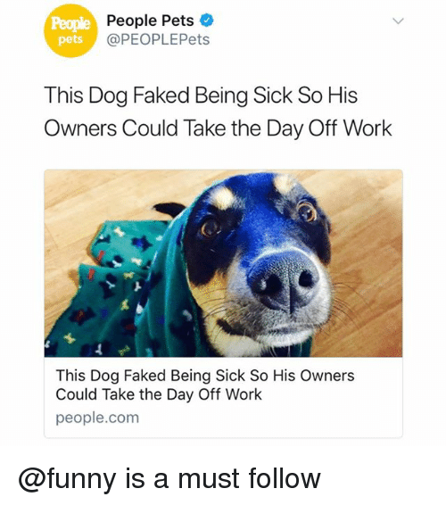 Funny, Work, and Pets: People  pets  p People Pets  @PEOPLEPets  This Dog Faked Being Sick So His  Owners Could Take the Day Off Work  This Dog Faked Being Sick So His Owners  Could Take the Day Off Work  people.com @funny is a must follow
