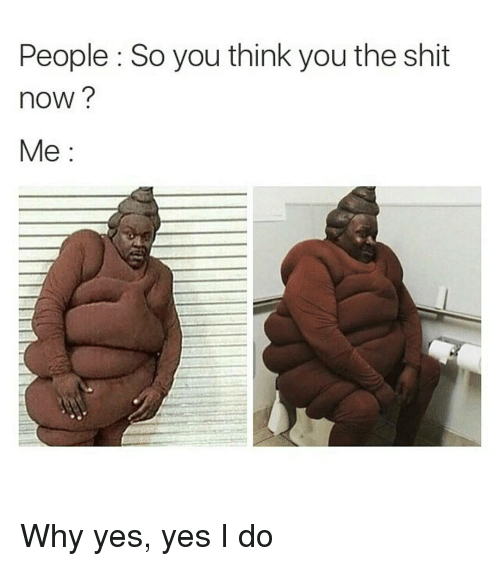 Shit, Dank Memes, and How: People So you think you the shit  hoW  Me Why yes, yes I do