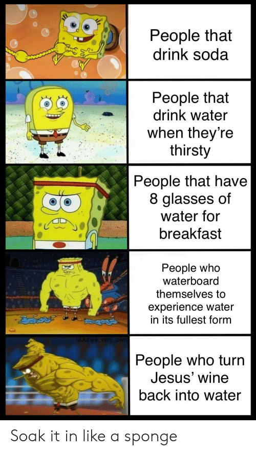 soak: People that  drink soda  People that  drink water  when theyre  thirsty  People that have  8 glasses of  water for  breakfast  People who  Waterboard  themselves to  experience water  in its fullest form  u/Junes very _own  People who turrn  Jesus' wine  back into water Soak it in like a sponge