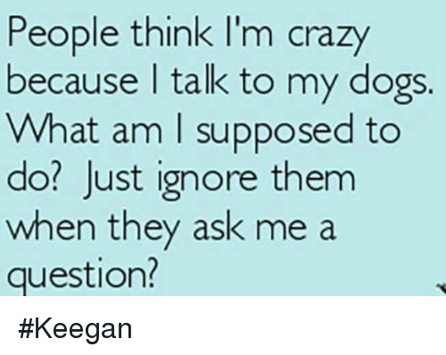 people think im crazy: People think I'm crazy  because I talk to my dogs.  What am I supposed to  do? Just ignore them  when they ask me a  question? #Keegan