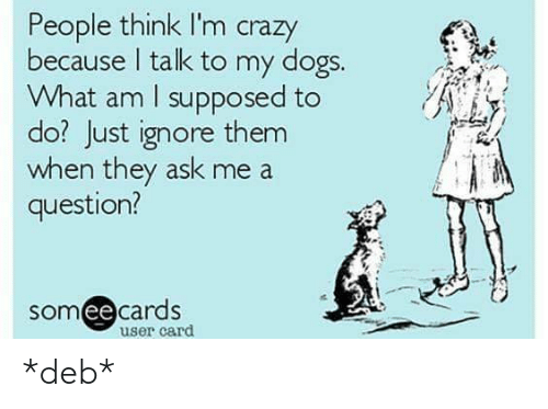 people think im crazy: People think I'm crazy  because I talk to my dogs.  What am I supposed to  do? Just ignore them  when they ask me a  question?  somee cards  ее  user card *deb*