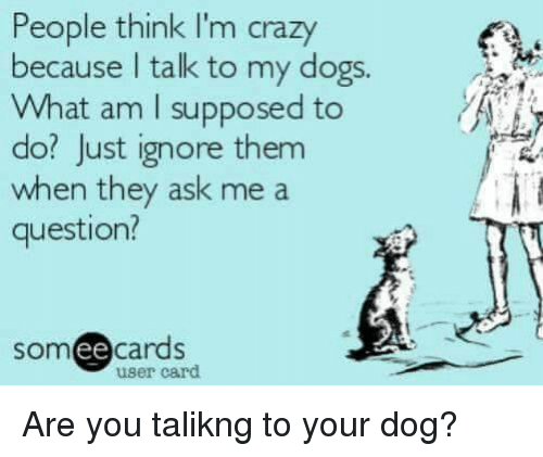 people think im crazy: People think I'm crazy  because talk to my dogs.  What am I supposed to  do? Just ignore them  when they ask me a  question?  ee  cards  user card Are you talikng to your dog?