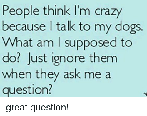 think-im-crazy: People think I'm crazy  because talk to my dogs.  What am I supposed to  do? Just ignore them  when they ask me a  question? great question!