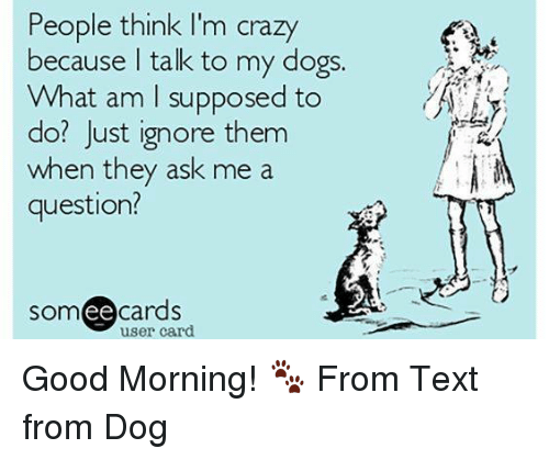 people think im crazy: People think I'm crazy  because talk to my dogs.  What am supposed to  do? Just ignore them  when they ask me a  question?  somee cards  user card. Good Morning! 🐾 From Text from Dog