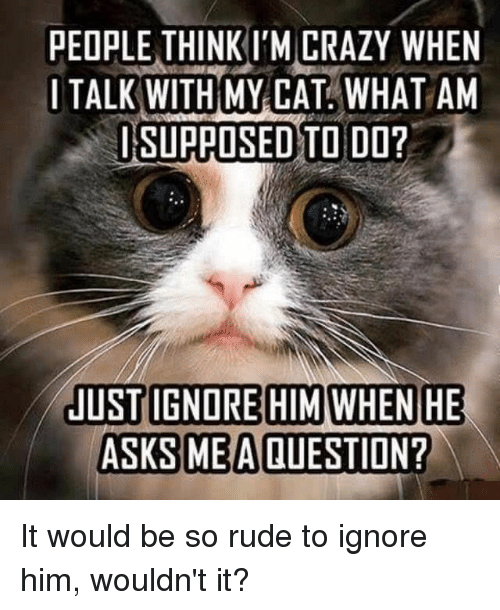 think-im-crazy: PEOPLE THINK I'M CRAZY WHEN  ITALK WITHMY CAT. WHAT AM  SUPPOSEDSTO DO?  C)  ASKS MEA QUESTION? It would be so rude to ignore him, wouldn't it?