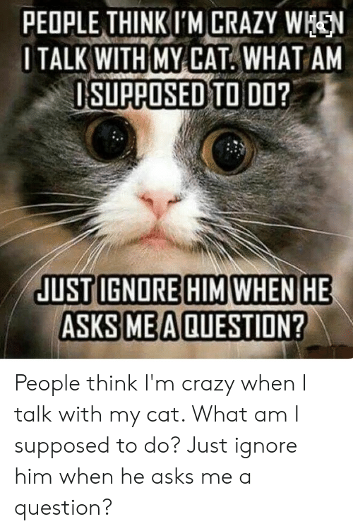 people think im crazy: PEOPLE THINKI'M CRAZY WEN  I TALK WITH MY CAT WHAT AM  ISUPAOSED TO DO People think I'm crazy when I talk with my cat. What am I supposed to do? Just ignore him when he asks me a question?