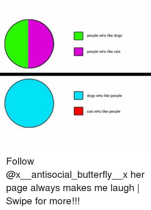 Cats, Dogs, and Memes: people who like dogs  people who like cats  dogs who like people  cats who like people Follow @x__antisocial_butterfly__x her page always makes me laugh | Swipe for more!!!