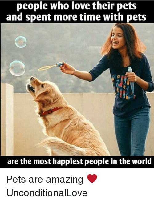 Dekh Bhai, International, and The World: people who love their pets  and spent more time with pets  are the most happiest people in the world Pets are amazing ❤️ UnconditionalLove