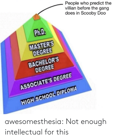 Masters: People who predict the  villian before the gang  does in Scooby Doo  Ph.D.  MASTER'S  DEGREE  BACHELOR'S  DEGREE  ASSOCIATE'S DEGREE  HIGH SCHOOL DIPLOMA awesomesthesia:  Not enough intellectual for this