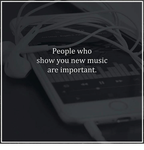 People Who Show You New Music Are Important | Meme on SIZZLE