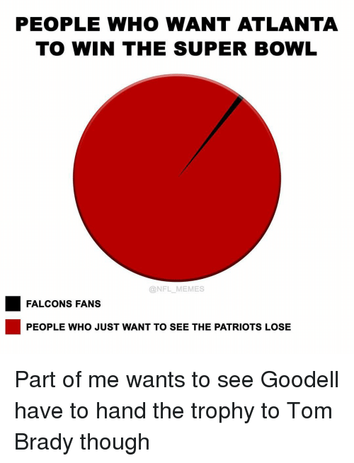 Memes, Nfl, and Super Bowl: PEOPLE WHO WANT ATLANTA  TO WIN THE SUPER BOWL  @NFL MEMES  FALCONS FANS  PEOPLE WHO JUST WANT TO SEE THE PATRIOTS LOSE Part of me wants to see Goodell have to hand the trophy to Tom Brady though