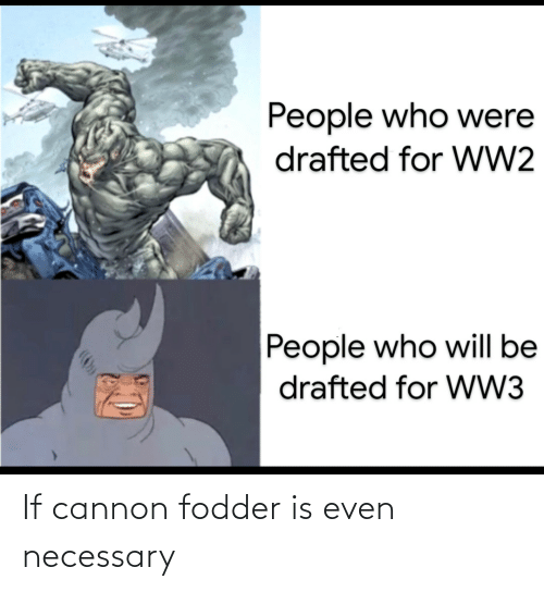ww2: People who were  drafted for WW2  People who will be  drafted for WW3 If cannon fodder is even necessary