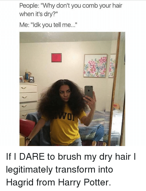 "Girl Memes: People: 'Why don't you comb your hair  when it's dry?  Me: ""ldk you tell me...' If I DARE to brush my dry hair I legitimately transform into Hagrid from Harry Potter."