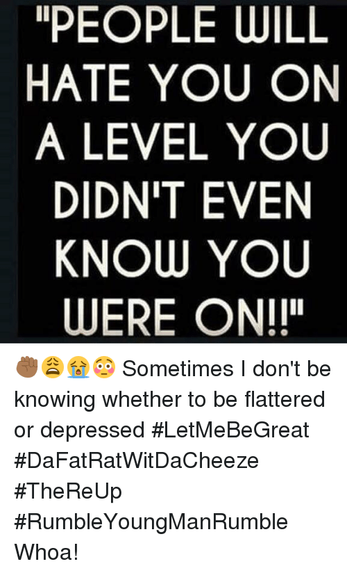 "Depression: PEOPLE WILL  HATE YOU ON  A LEVEL YOU  DIDN'T EVEN  KNOW YOU  WERE ON!!"" ✊🏾😩😭😳 Sometimes I don't be knowing whether to be flattered or depressed #LetMeBeGreat #DaFatRatWitDaCheeze #TheReUp #RumbleYoungManRumble Whoa!"