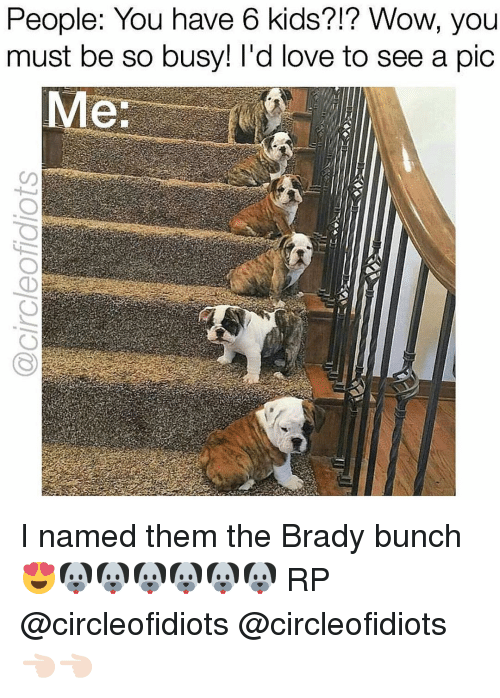 brady: People: You have 6 kids?!? Wow, you  must be so busy! I'd love to see a pic  Me: I named them the Brady bunch😍🐶🐶🐶🐶🐶🐶 RP @circleofidiots @circleofidiots 👈🏻👈🏻