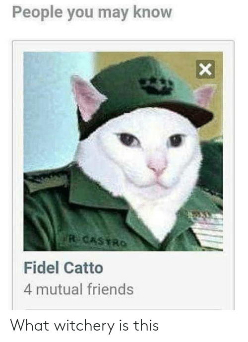 Fidel: People you may know  R CASTRO  Fidel Catto  4 mutual friends What witchery is this