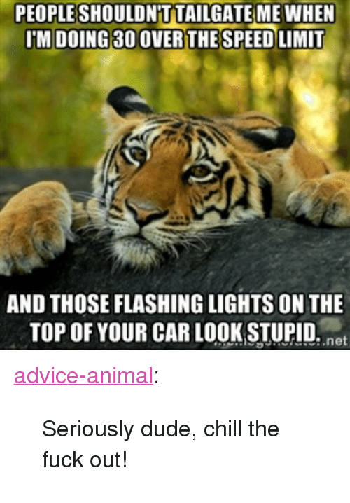 "Advice, Chill, and Dude: PEOPLESHOULDN T TAILGATE MEWHEN  IM DOING 30 OVERTHE SPEED LIMIT  AND THOSE FLASHING LIGHTS ON THE  TOP OF YOUR CAR LOOK STUPID. net <p><a href=""http://advice-animal.tumblr.com/post/174065973596/seriously-dude-chill-the-fuck-out"" class=""tumblr_blog"">advice-animal</a>:</p>  <blockquote><p>Seriously dude, chill the fuck out!</p></blockquote>"