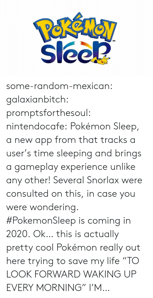 "gameplay: Perenay  sleek  TM some-random-mexican: galaxianbitch:  promptsforthesoul:  nintendocafe:   Pokémon Sleep, a new app from that tracks a user's time sleeping and brings a gameplay experience unlike any other!   Several Snorlax were consulted on this, in case you were wondering.   #PokemonSleep is coming in 2020.   Ok… this is actually pretty cool  Pokémon really out here trying to save my life    ""TO LOOK FORWARD WAKING UP  EVERY MORNING"" I'M…"