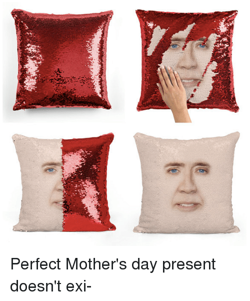 Dank, Mother's Day, and Mothers: Perfect Mother's day present doesn't exi-