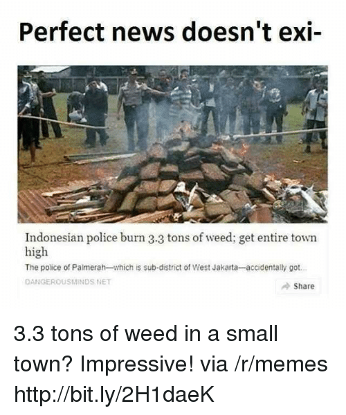 jakarta: Perfect news doesn't exi-  Indonesian police burn 3.3 tons of weed; get entire town  high  The police of Palmerah-which is sub-district of West Jakarta-accidentally got  DANGEROUSMINDS NET  Share 3.3 tons of weed in a small town? Impressive! via /r/memes http://bit.ly/2H1daeK