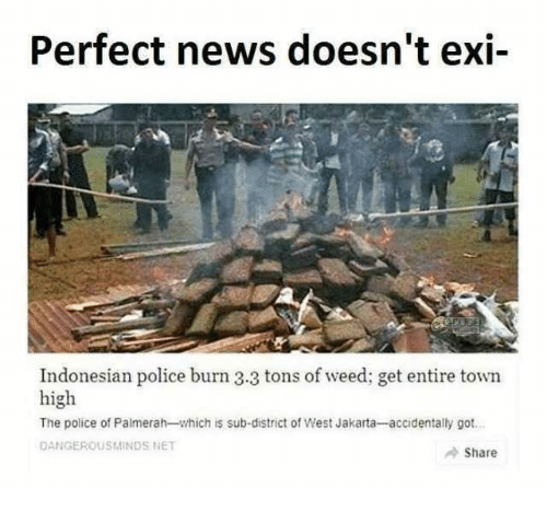 jakarta: Perfect news doesn't exi-  Indonesian police burn 3.3 tons of weed; get entire town  high  The police of Palmerah-which is sub-district of West Jakarta-accidentally got  DANGEROUSMINDS NET  Share