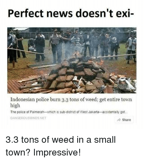 jakarta: Perfect news doesn't exi-  Indonesian police burn 3.3 tons of weed; get entire town  high  The police of Palmerah-which is sub-district of West Jakarta-accidentally got  DANGEROUSMINDS NET  Share 3.3 tons of weed in a small town? Impressive!