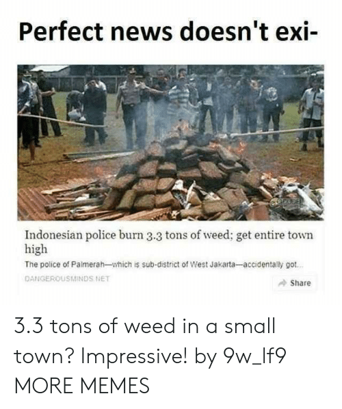 jakarta: Perfect news doesn't exi-  Indonesian police burn 3.3 tons of weed; get entire town  high  The police of Palmerah-which is sub-district of West Jakarta-accidentally got  DANGEROUSMINDS NET  Share 3.3 tons of weed in a small town? Impressive! by 9w_lf9 MORE MEMES