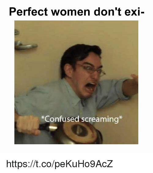 Dont Exi: Perfect women don't exi-  *Confused screaming* https://t.co/peKuHo9AcZ