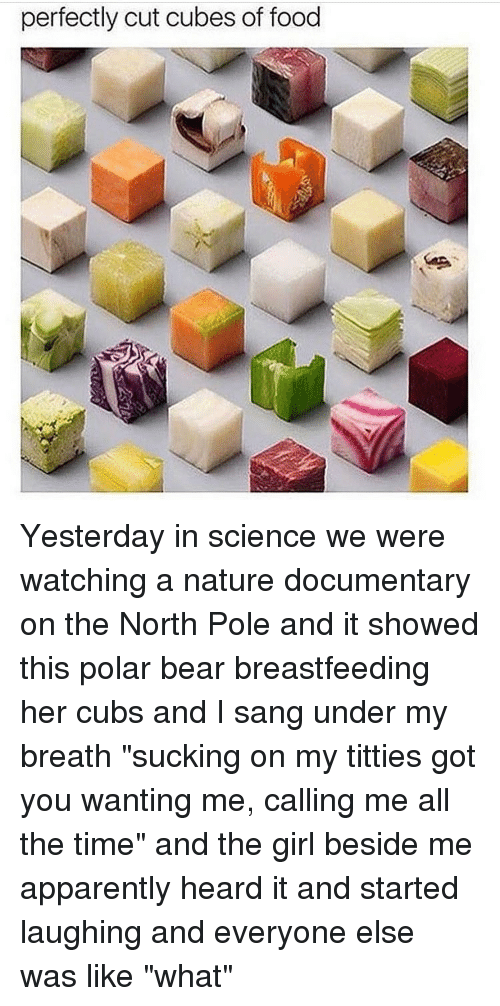 """Titties, Sang, and Breastfeeding: perfectly cut cubes of food Yesterday in science we were watching a nature documentary on the North Pole and it showed this polar bear breastfeeding her cubs and I sang under my breath """"sucking on my titties got you wanting me, calling me all the time"""" and the girl beside me apparently heard it and started laughing and everyone else was like """"what"""""""
