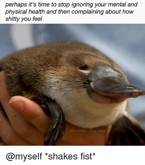 Memes, Time, and Physical: perhaps it's time to stop ignoring your mental and  physical health and then complaining about hoW  shitty you feel  scariest bug ever @myself *shakes fist*