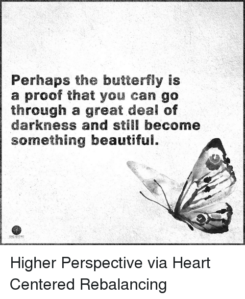 Perhapes: Perhaps the butterfly is  a proof that you can go  through a great deal of  darkness and still become  something beautifui. Higher Perspective via Heart Centered Rebalancing
