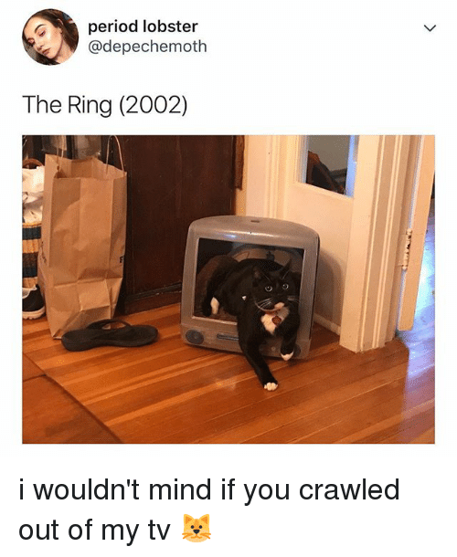 Period, The Ring, and Relatable: period lobster  @depechemoth  The Ring (2002) i wouldn't mind if you crawled out of my tv 🐱